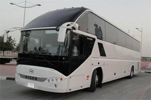 Аренда автобуса с водителем для экскурсии по СПб