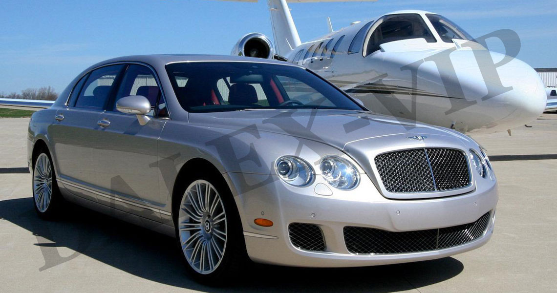 Luxury transfers, shuttle, taxi for VIP in Pulkovo Airport St Petersburg